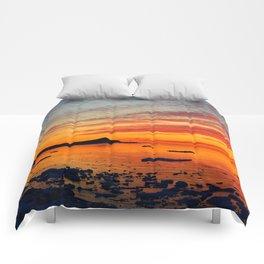 Coastal Delight Comforters