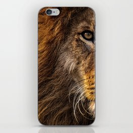 Majestic Lion iPhone Skin