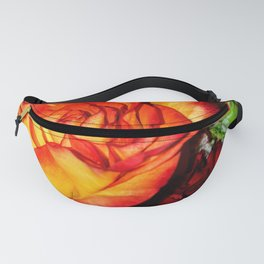 Apples & Oranges Fanny Pack