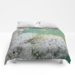 VENT REEF Comforters