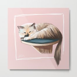 Fiona the Cat Metal Print