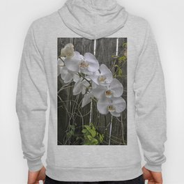 White Moth Orchid Hoody