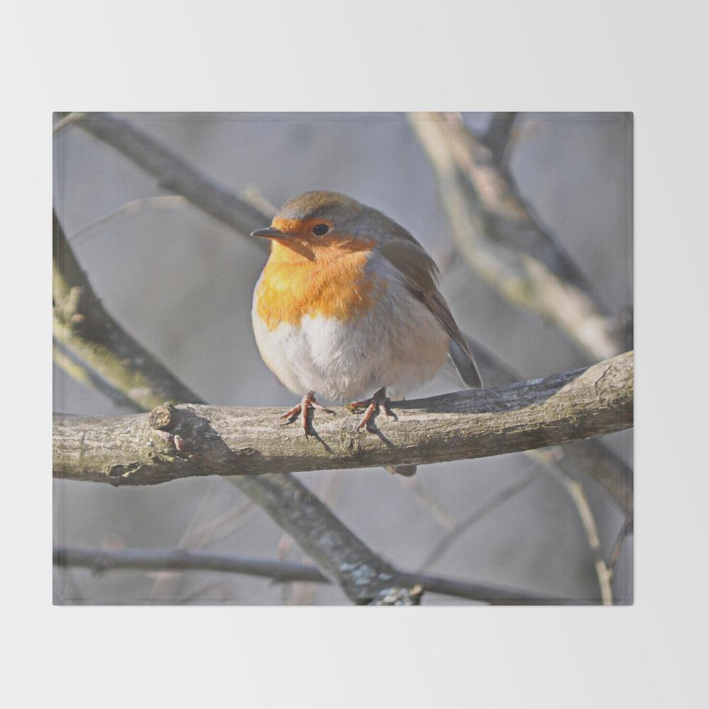 Robin Redbreast Throw Blanket (BLK915575) photo