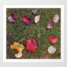 Autumn study, one. Art Print