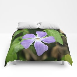Lilac Periwinkle Comforters