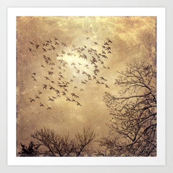 up with the birds Art Print