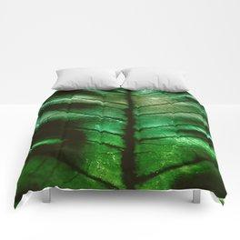 Dragon Spine Comforters