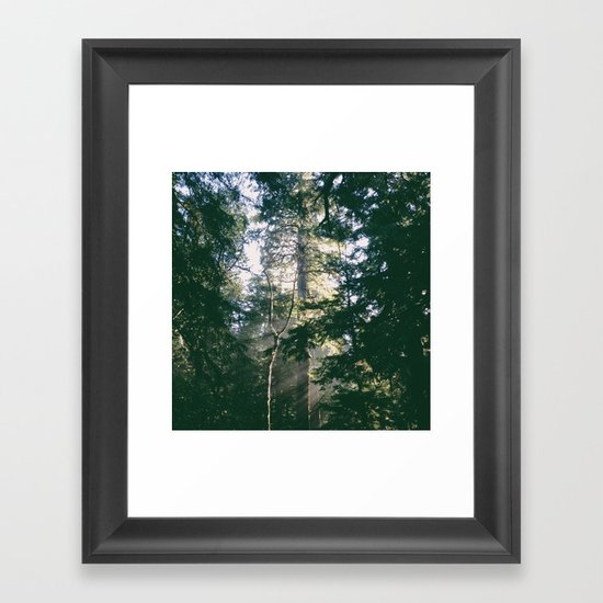 Tree Light Framed Art Print