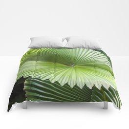 Fan Palms Comforters