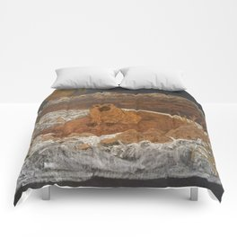 Good Morning, Mr. Groundhog Comforters