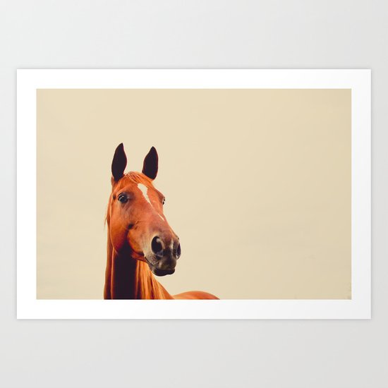 Horse of Eagle Crest  Art Print