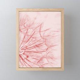 Dandelion In Pink Framed Mini Art Print