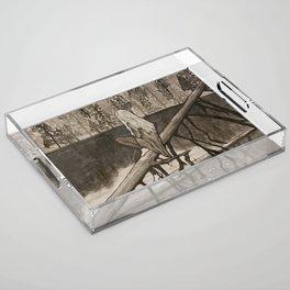 Silence Acrylic Tray