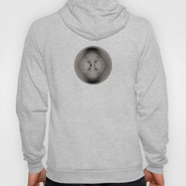 X-ray diffraction image of DNA Hoody
