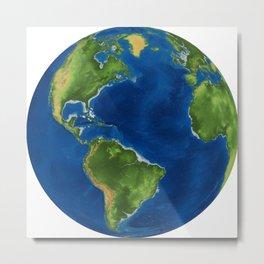 the globe Metal Print