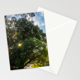 Sunstar behind some trees on the lake shore at Wilson Bay, New Zealand Stationery Cards