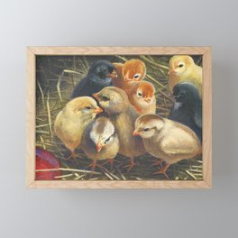 baby chicks - by phil art guy Framed Mini Art Print
