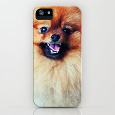 POMERANIAN PHOTOGRAPH iPhone (5, 5s) Slim Case