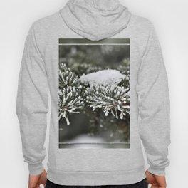 Snowy Evergreen Hoody