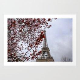 Paris Bloom Art Print