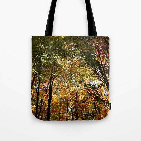 Through the Trees in October Tote Bag