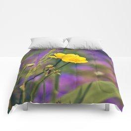 Buttercup Blues Comforters