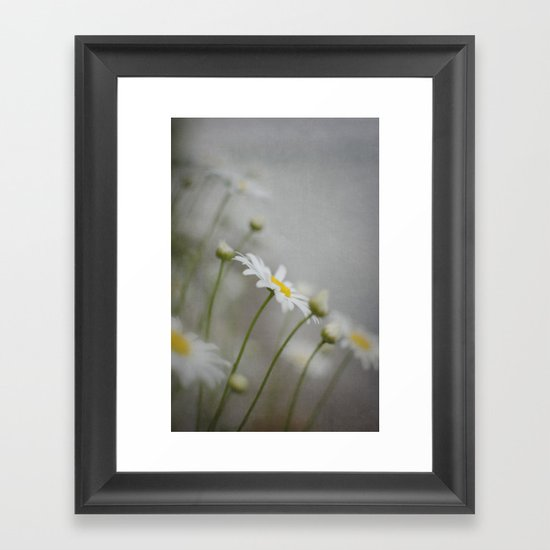 Daises  Framed Art Print