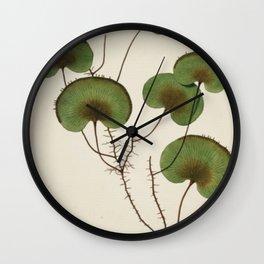 Kidney Fern Wall Clock