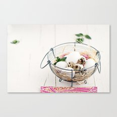 Eggs II Canvas Print