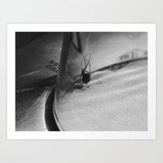 Spider under glass Art Print
