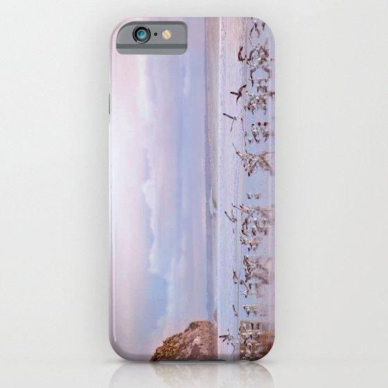 Seabirds on Shore iPhone & iPod Case