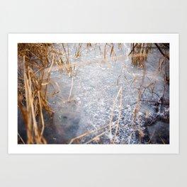 Winter Art Print