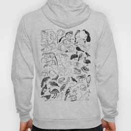 Extinct and Endangered - Australia Hoody