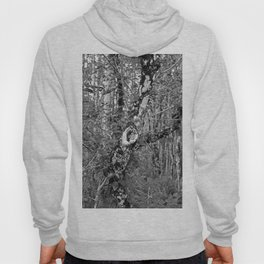 What Lovers Do- vertical Hoody