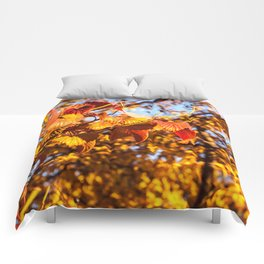 Fall Leaves Photography Print Comforters