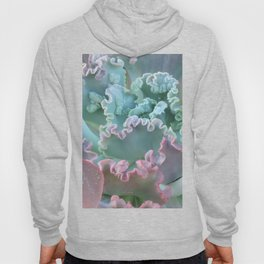 Succulent in the Sand Hoody