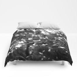 Mishimi/Closing Comforters