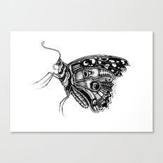 Pretty Fly For A Butterfly Canvas Print