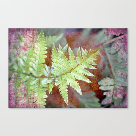 Fern Canvas Print