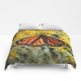 Monarch on Rubber Rabbitbrush Comforters