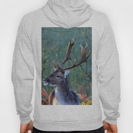 Stag Leader of the Herd 1 Hoody