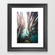 Deep Blue Reef Framed Art Print