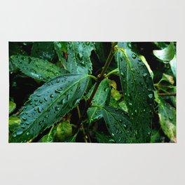 Greenery and leaf I Rug