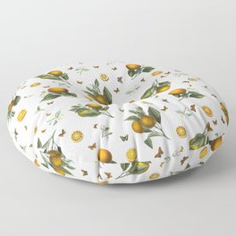 Oranges and Butterflies in Blush Floor Pillow