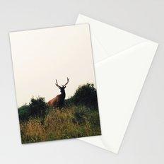 Prairie Creek Elk Stationery Cards