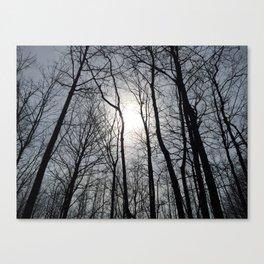 White Sky, Black Trees Canvas Print
