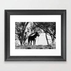 Lone... Framed Art Print