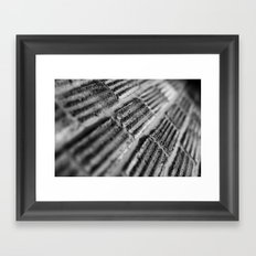 {texture} Framed Art Print