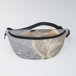 Watercolor Mountain Cottontail Rabbit Fanny Pack