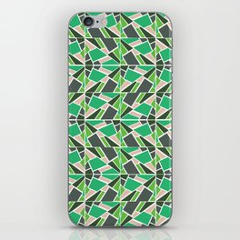 RAY iPhone Skin